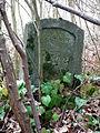 MOs810, WG 2015 54 Okonecczyzna (Lomczewo) (old ev. cemetery).JPG