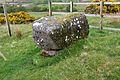 Machrie Moor stone circle 48.jpg