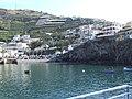 Madeira - Camara De Lobos (2092637589).jpg