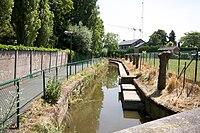 Mandel in Roeselare.jpg