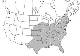 Map range of Psorophora ciliata in North America.jpg