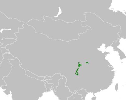 Mapa distribuicao Ailuropoda melanoleuca
