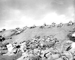 """Marines de la 5ª división en el atasco de la """"Playa Roja"""" nº1. 19 de febrero de 1945."""