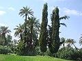 Marrakesh - 2008 - panoramio (72).jpg