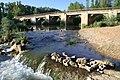 Mayorga río Cea 2 JMM.jpg