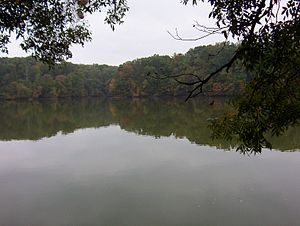 Meeman-Shelby Forest State Park - Scenic view onto a lake in Meeman Shelby State Park