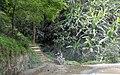 Melamchi, Nepal - panoramio (5).jpg