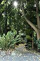 Melb botanical gardens06.jpg