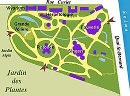 M nagerie du jardin des plantes wikipedia - Congeler des aubergines du jardin ...