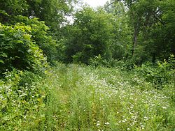 Mendota to Wabasha Military Road–Cannon River Section.jpg