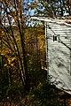 Mercer Slough Environmental Educational Center - view from the 'Treehouse' 03.jpg