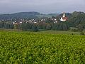 Mickhausen - St Wolfgang 2.jpg