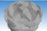 Micro-CT braided polymer rope 3D 07
