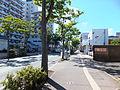 Minami O-dori Street of Akita City 20130826.jpg