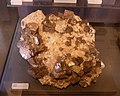 Mineral exhibit - Galena (32131650336).jpg