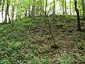 Miserden Castle mound.JPG