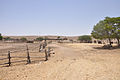 Mitzpe Ramon Farm in the desert (7704021916).jpg