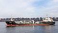 Motortankschiff Annika auf der Elbe in Hamburg (IMO 9628489, ENI04809760)-4808.jpg