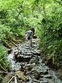 Mount Takao - Trail 6 (9410138476).jpg