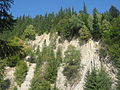 Muntele Ursoaica.jpg