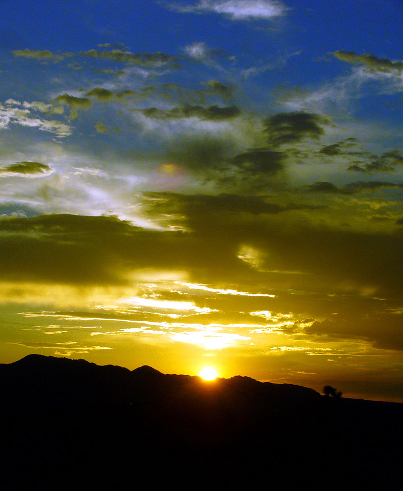 Mustard Blue Sunset.jpg