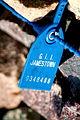 Mysterious Blue Tag (1445811560).jpg