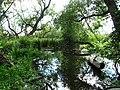 Närheten av utloppet där Lövstaholms-ån rinner ut i Mälaren - panoramio (1).jpg