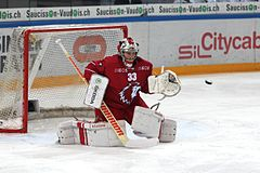 NLA, Lausanne HC vs. Rapperswil-Jona Lakers, 11th November 2014 03.JPG