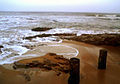 Natural rocks at Bheemili beach (India).jpg