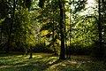 Nature (230341223).jpeg