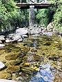 Nature Rangala Ella Bridge.jpg