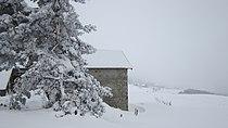 Neige sur Grandrif 03.JPG