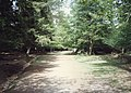 New Forest, Hampshire (150194) (9456059202).jpg
