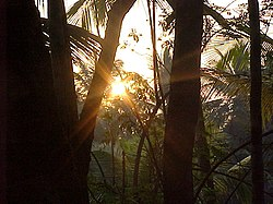 sunrise in North Malabar