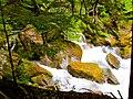 North Cascades National Park (9290012929).jpg
