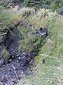 Old pipe from a waterfall at the start of the mount arthur track - panoramio.jpg