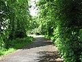 Old road at Eddleston - geograph.org.uk - 568018.jpg