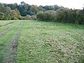 Old watermeadows - geograph.org.uk - 273664.jpg