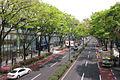 Omotesando-May-2010-03.jpg
