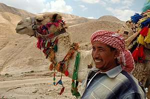 Bedouin and his camel on the road to Jericho