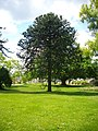 Orléans - jardin des plantes (03).jpg