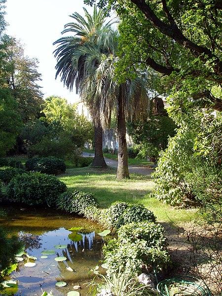 File:Orto botanico di Pisa - general view.JPG