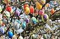 Ostereierbaum mit 10.000 Eiern geschmückt IMG IMG 9785WI.jpg