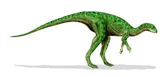 Kimmeridgian - Othnielosaurus