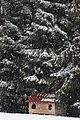 Pamje dimri në Kosovë.jpg