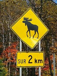 Condition Routiere Quebec >> Panneaux de signalisation routière - Wiki
