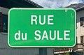 Panneau rue du Saule (Embrun) mai 2021.jpg