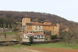 The château of Antouillet, in Panossas