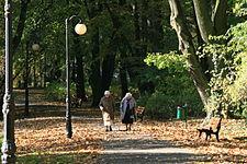 Park Sołacki w Poznaniu , alejki spacerowe - 7798
