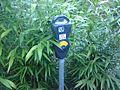 Parking meter 568 47610.jpg